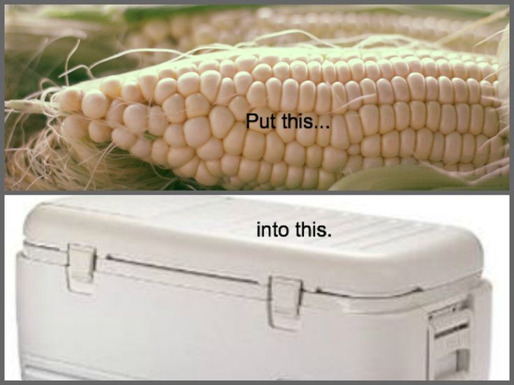 A Bountiful Kitchen: Cooler Corn for 350