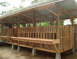 EMBUNPAGI Farm: Cara Membuat Kandang Kambing Yang Bagus ...