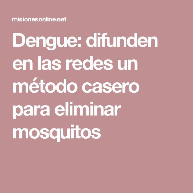 Dengue: difunden en las redes un método casero para eliminar mosquitos