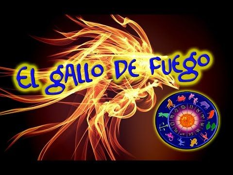 2017 AÑO DEL GALLO DE FUEGO | Galliforme De Fuego Chino 2017 | Horoscopo Chino 2017 | ZODIACO CHINO 2017