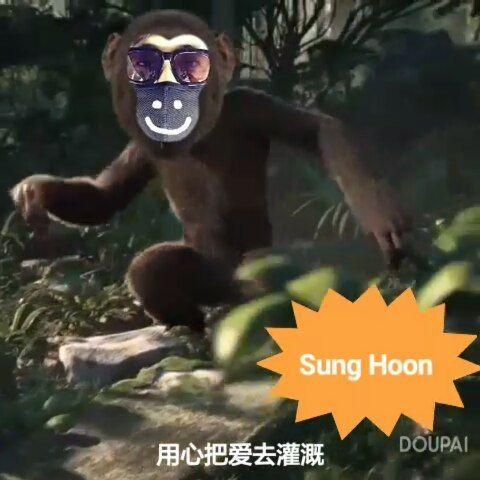 "13 Likes, 3 Comments - Debbie Moh (@debbie_moh) on Instagram: ""#debbie_moh My post made for #SungHoon 💞💞💞 Sung Hoon Fighting!!! 👍👏🙌💟 . #성훈 #배우성훈  @sunghoon1983…"""