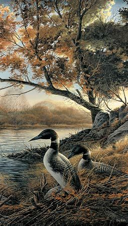 Hidden Point-Loons by Terry Redlin