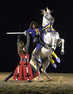 Pin By Wyndham Hotels And Resorts On Anaheim California Medieval Times Dinner Medieval Times California Vacation