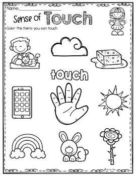 Five Senses Activities Atividades De Linguagem Educacao