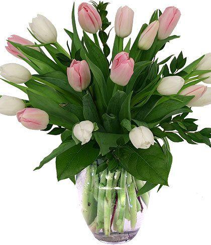 Blush of Spring-Easy, breezy Tulips...always a favorite! #BagoysFlorist #AnchorageFlowers #MothersDay #MothersDayFlowers #MothersDayGifts