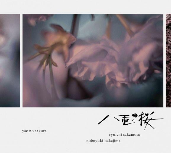 坂本龍一 / 中島ノブユキ「八重の桜」