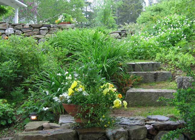 Hill Landscape: Hill Landscape, Garden Ideas, Garden Paths, Garden Grows, Blue Hill, Dune Ideas