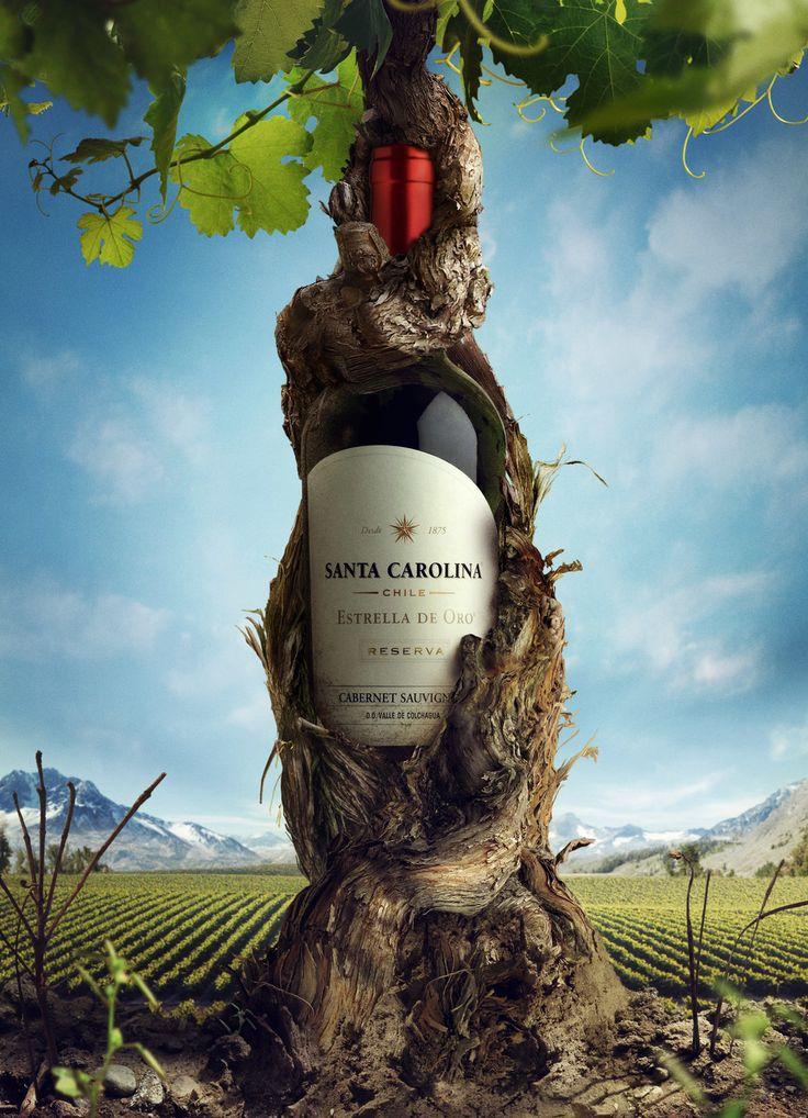Santa Carolina Wine Design Ad