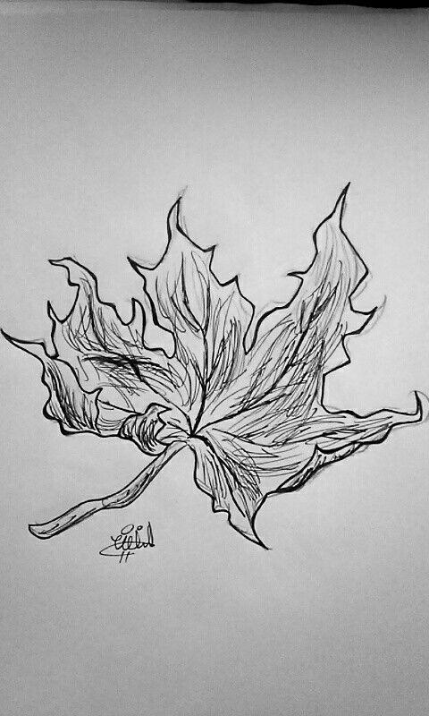 Inktober day #3! Leaf