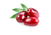 Cornelian Cherry: Our newest source of iridoids can be found in Thrive Adaptogenics: Max.www.noniofsweden