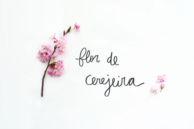 Floriografia: Flor de Cerejeira