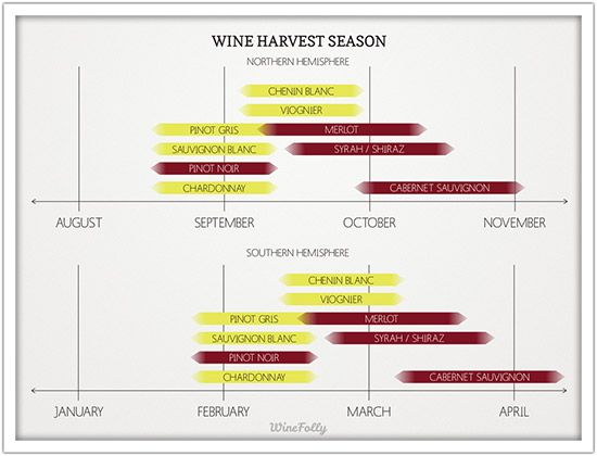 Heads up because these are the perfect months to schedule a relaxing holiday to wine country - it's wine harvest season, winos!