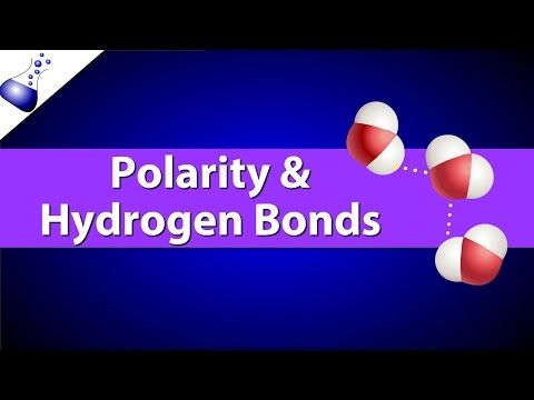 Polarity and Hydrogen Bonds - YouTube more about water; temp moderation, density, states, hydrogen bonds, expansion upon freezing, aqueous solutions, NaCl in water @ http://ljhs.sandi.net/faculty/AQuesnell/ADV%20Bio%20Outlines/Ch%202/2.12-2.14adv.pdf