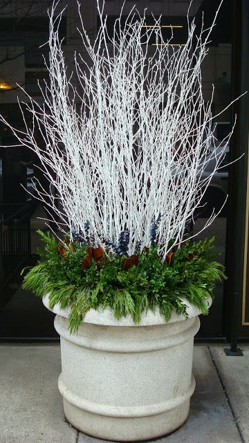 WinterHoliday Container Display. White branches and green holiday leaves.More