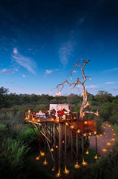 Lua de Mel em Hotéis Sobre Árvores - Hotel Lions Sand Ivory Lodge