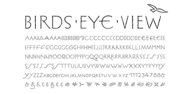 Franchising: a birdis eye view essay