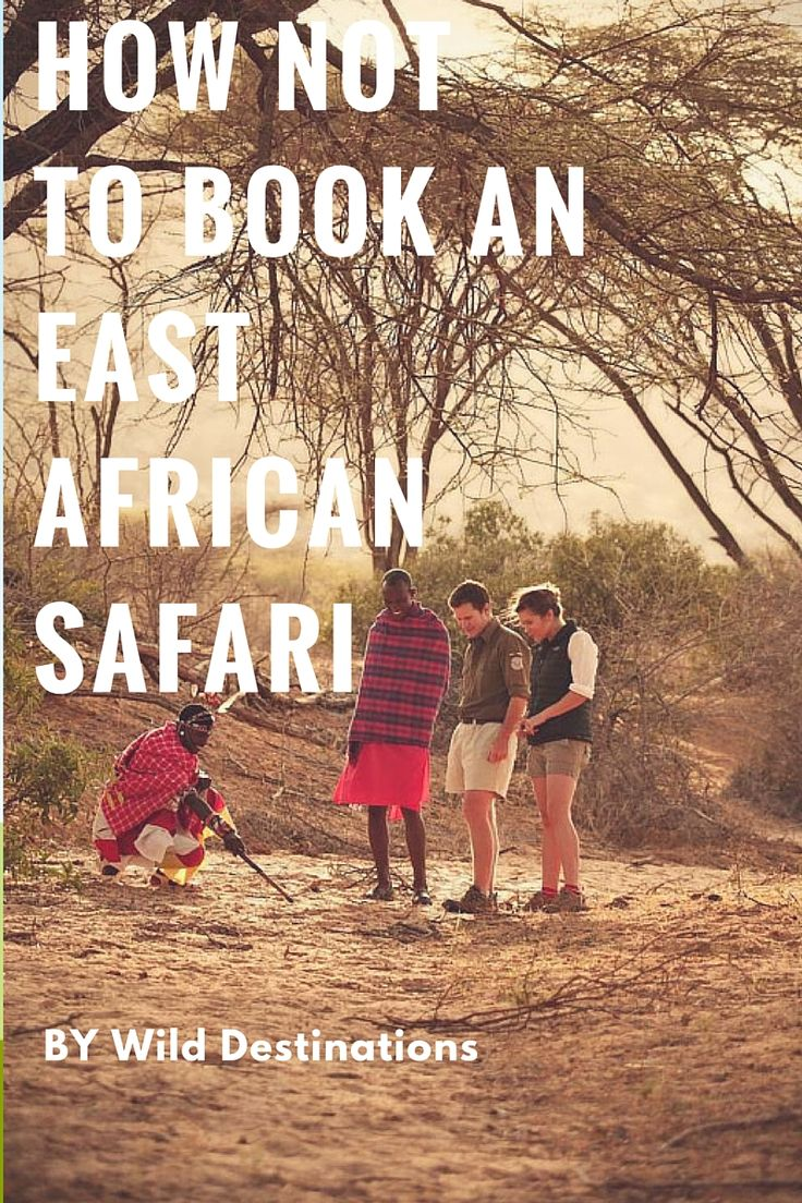 There are 4 ways to book an East African safari. This blog advises you on the pros & cons of each way