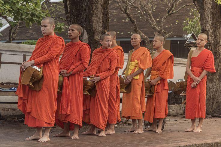 Подношение еды монахам. Луанг Прабанг. Лаос.
