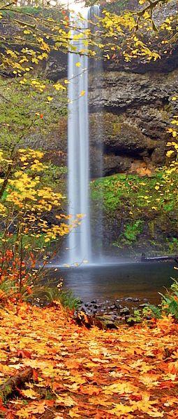 Beautiful South Falls in autumn ~ Silver Falls State Park, Oregon • photo: Mike Putnam