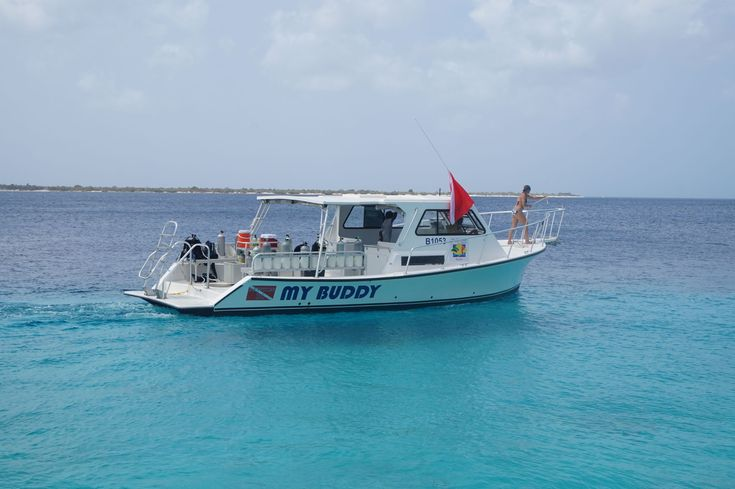 Buddy Dive Resort Bonaire expands fleet with new boat #‎scuba‬ ‪#‎diving‬ ‪#‎dive‬ ‪#‎trip‬ ‪#‎travel‬ ‪#‎holiday‬ ‪#‎vacation‬ ‪#‎Bonaire‬