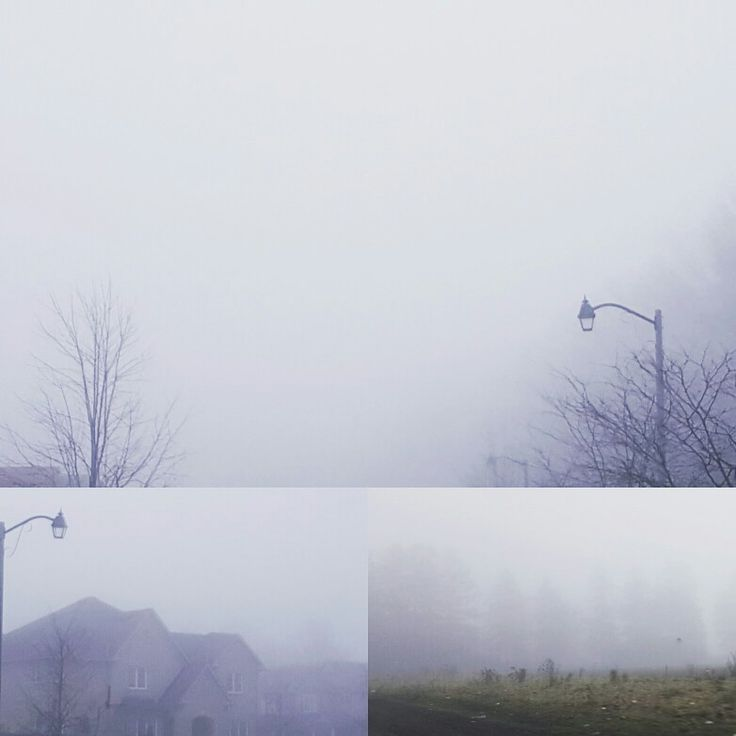 Foggy drive  #winterblue #leonardselvaratnam #realeatate #scarborough #Toronto