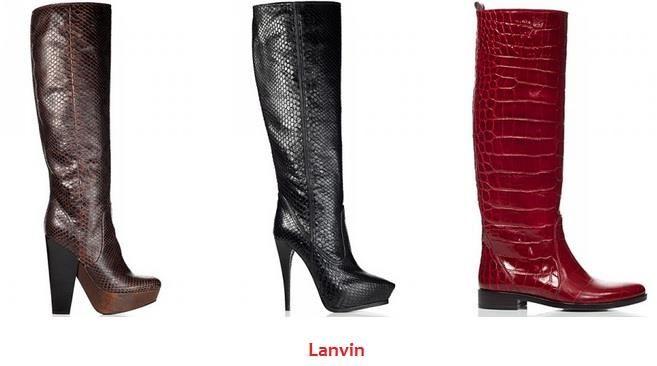 Стильная обувь сапоги зима