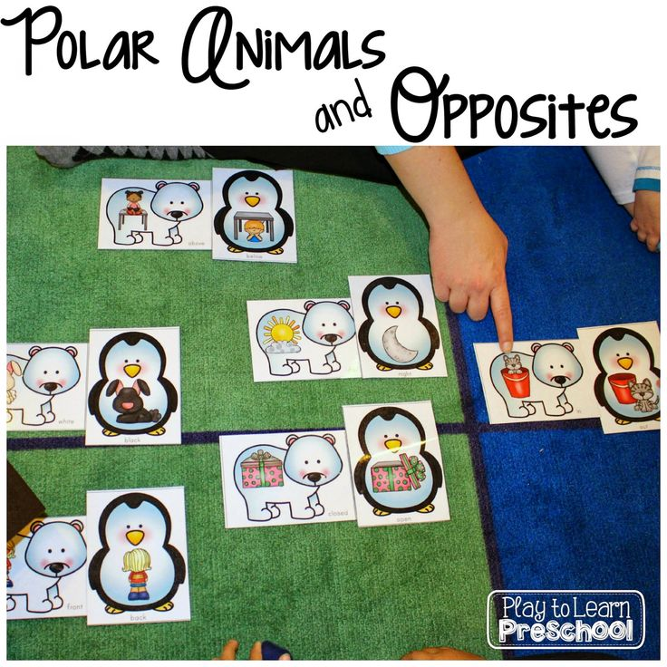 Polar Animals Unit - A study of opposites from Play to Learn Preschool