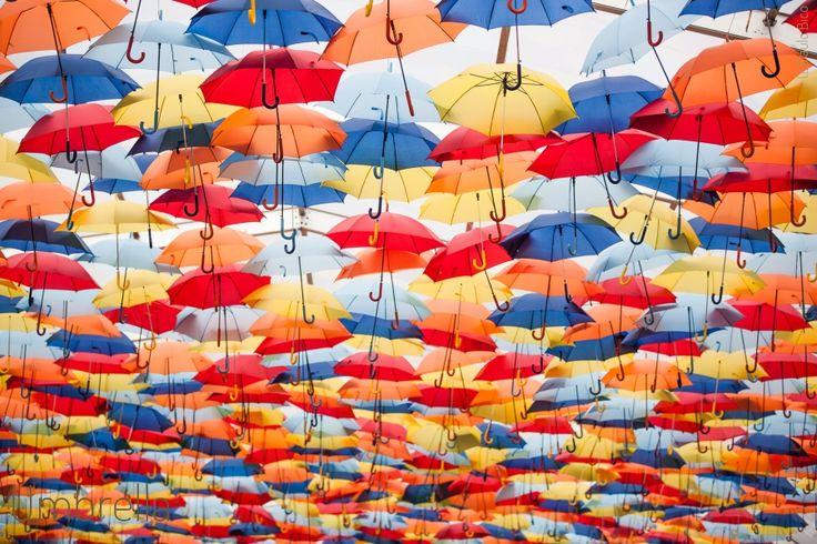 Umbrella   Paulo Bico - Fotografia