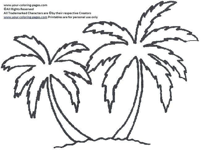 Image result for printable palm tree stencil new Pinterest