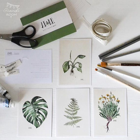 Set of 4  Plants cards. Illustrated Cards. Botanical Cards.