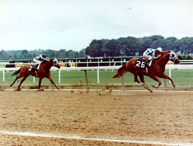 1000 Images About Secretariat Racing Pictures On