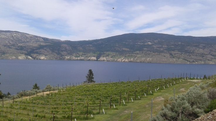View from Sage Hill Winery in Summerland.