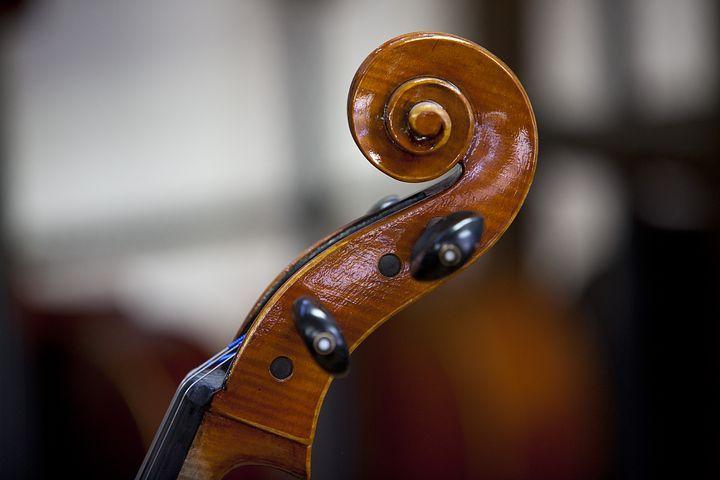 Violín, Música, Instrumento