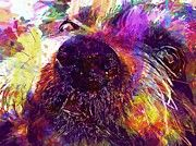 "New artwork for sale! - "" Dogs Yorkshire Terrier Pets Summer  by PixBreak Art "" - http://ift.tt/2eKfaue"
