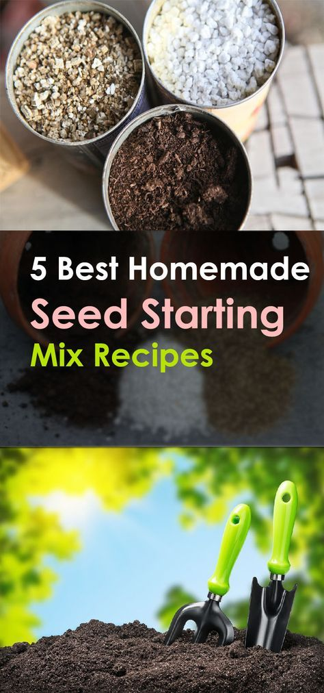 Why splurge money when you can make your own seed mix easily? Check out these 5 Best Homemade Seed Starting Mix Recipes below.