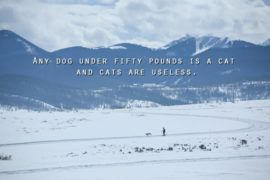 motivational quotes Ron Swanson about dog and cat
