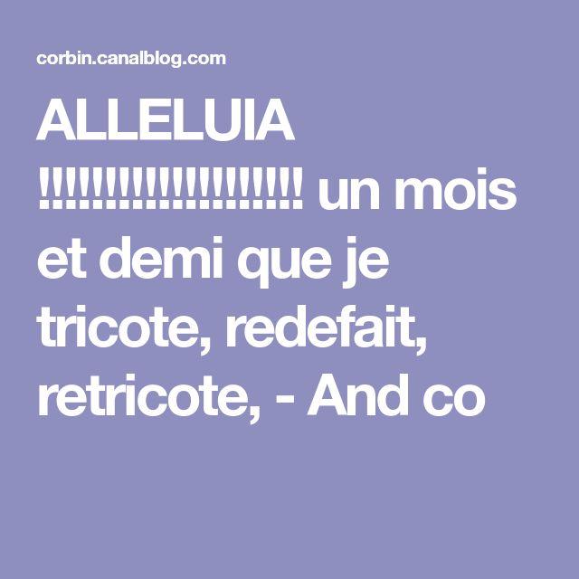 ALLELUIA !!!!!!!!!!!!!!!!!!!! un mois et demi que je tricote, redefait, retricote, - And co
