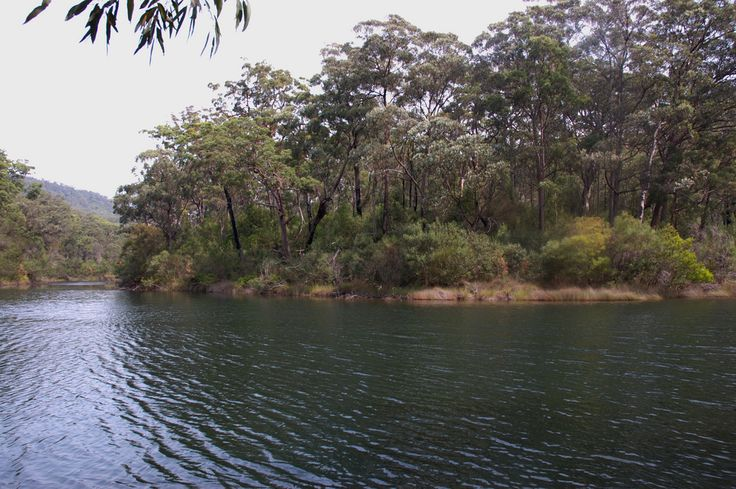 Lake Eckersley, Heathcote National Park