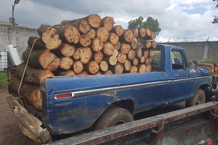 Al realizar un patrullaje en la comunidad de La Mojonera, los oficiales detectaron una camioneta marca Ford, tipo Pick-Up, color azul, sin modelo ni número de serie visible, que transportaba ...