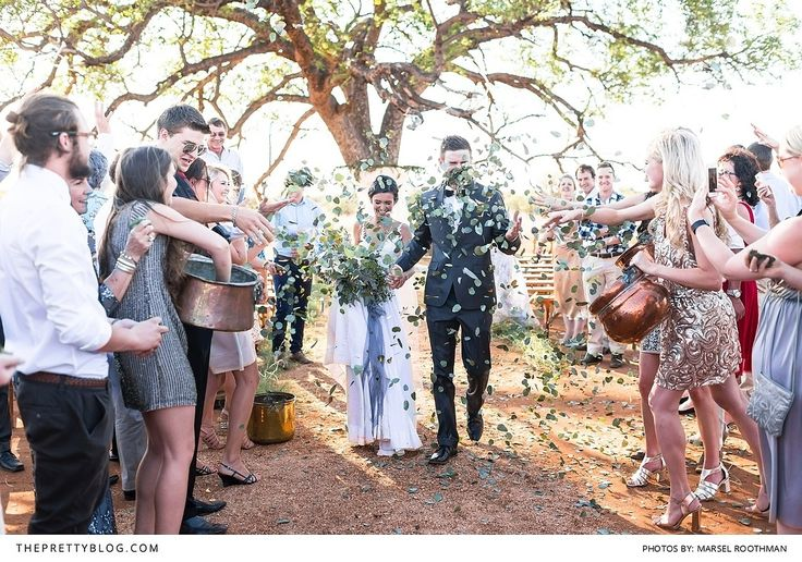 Go through link- An African bush wedding with a surprise wedding gift awaited these two lovebirds.