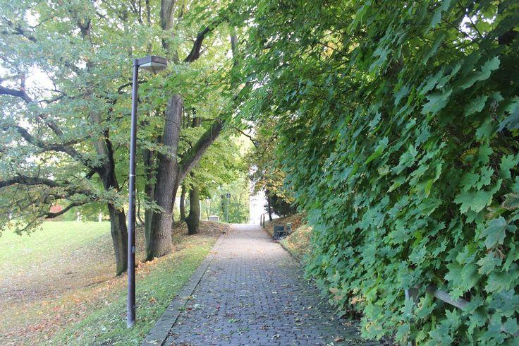 Bummeln im Park bei tollem #Wetter in #Dresden