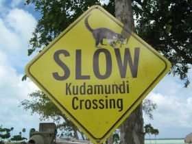 Kudamundi crossing sign, Corozal, Mexico – If you live in Corozal Town, itself, you would not need to own a car but if you live outside of town, yes you would need a car and preferably a 4-wheel drive if you were going to live here year-round because it could be a little muddy during the rainy season. There are dirt roads here so you would want to have that traction.