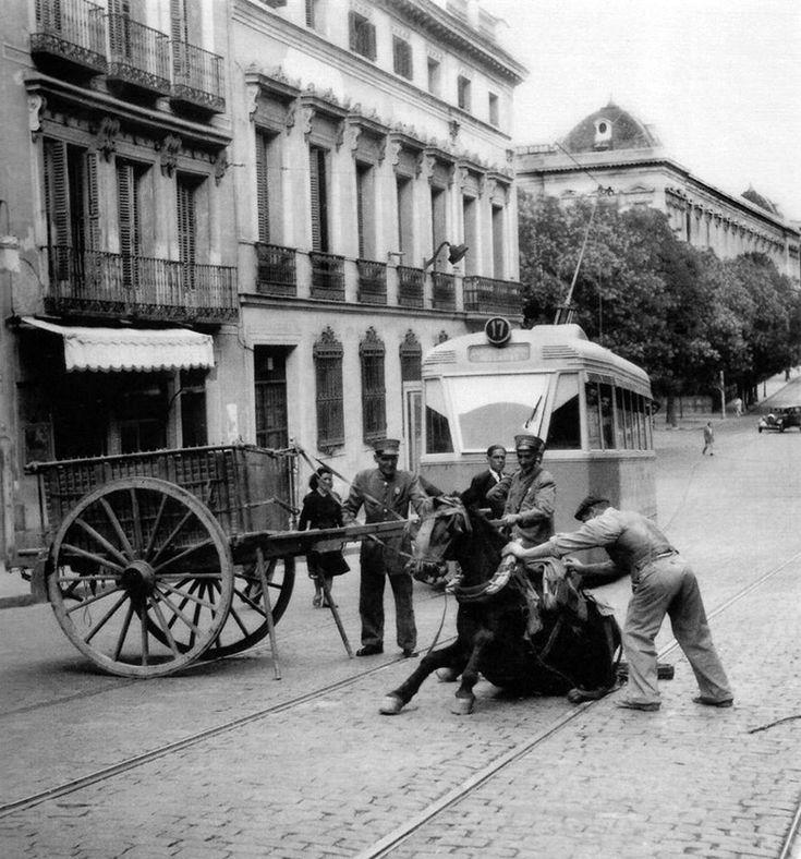 Una mula que tiraba de un carro cae delante del tranvía de la línea 17, que hacía el recorrido Cuatro Caminos-Vallecas en 1952. Destacable la solidaridad de los transeuntes en aquella época.