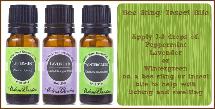 BEE STING / INSECT BITE Apply 1-2 drops of:  Peppermint, Lavender or Wintergreen on a bee sting or insect bite to help with itching and swelling. #beesting #insectbite