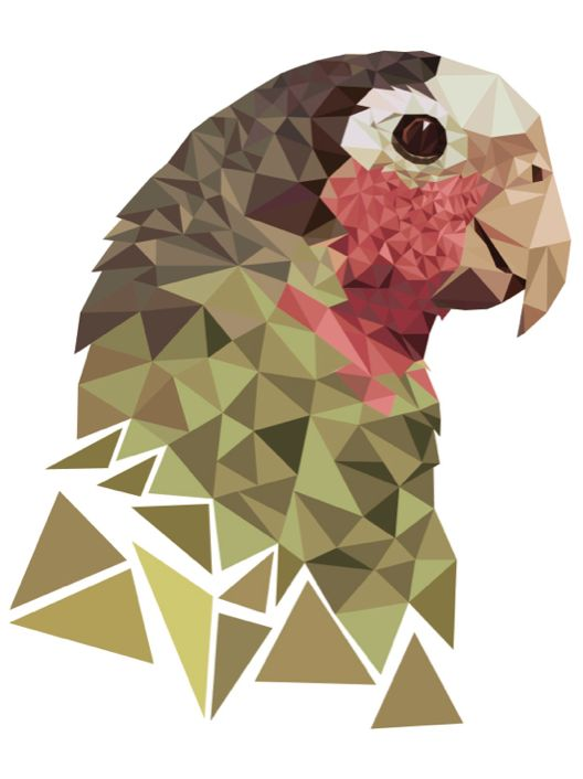 Parrot - graphic design assignment - using triangles, create a drawing of an animal/bird #op-kunst #värviõpetus #arhitektoonika
