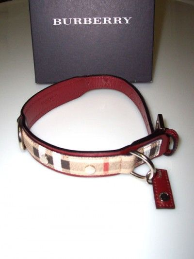 burberry designer dog collars - Sam and Jack are both big enough to fit in a dog collar.  WANT!!  hehe