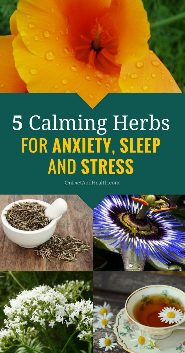 Herbs for weight loss 5 Calming Herbs for Anxiety, Sleep and Stress