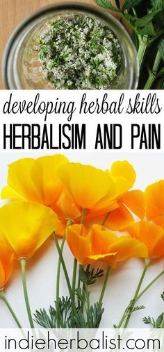 Learn how to use herbs to support ease and comfort when faced with physical pain.