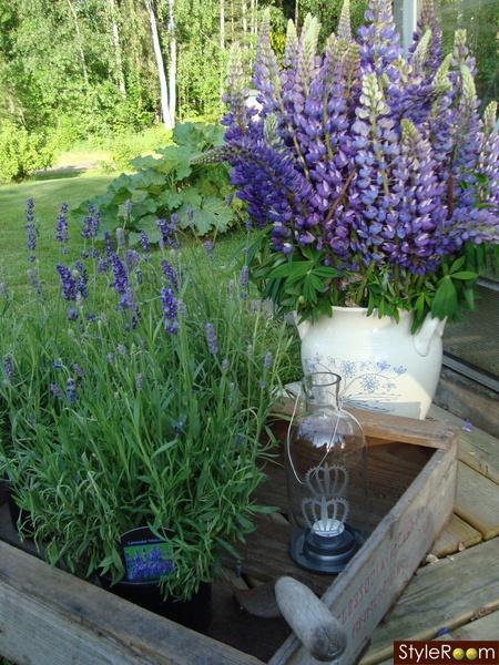Garden Cafe On Woodman