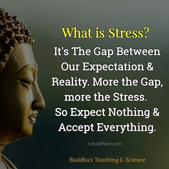 Buddhist Quotes Facebook: Best 25+ Buddhist Sayings Ideas On Pinterest